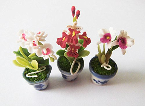 (Dollhouse Flower Miniature White Orchid in Pots Set Made of Artificial Clay Realistic it Very Cute. (3 Pots) )