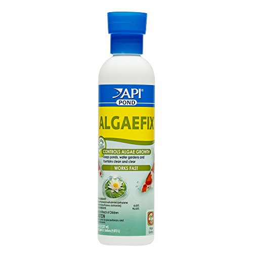 API POND ALGAEFIX Algae Control Solution 8-Ounce (Aquarium Algae Control)