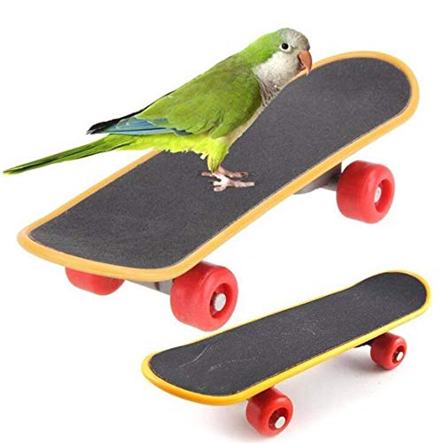 Parrot Toys,Skateboard Toys,Stand Perch for Bird,Funny Training Perch Toy for Parakeet Budgies Cockatiels Lovebird Conure (2 Pcs)