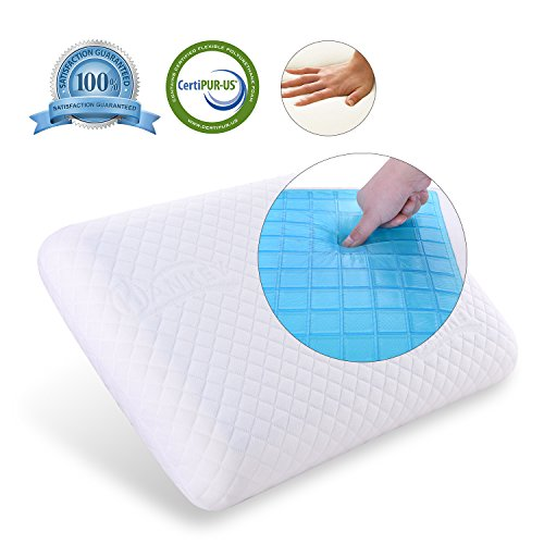 Hankey Double-Sided Memory Foam Cool Gel Pillow for Summer and Winter Use, Orthopedic...