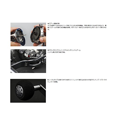 Japan Import Daiwa SALTIGA 10