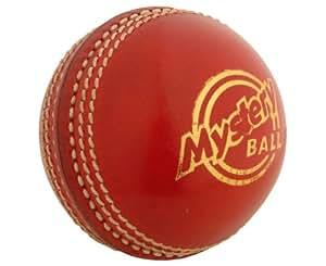 Gray Nicolls Mystery Junior Cricket Ball