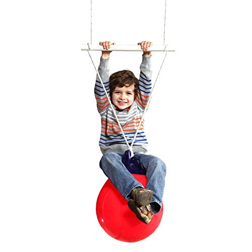 Fun and Function Buoy Ball Swing & Trapeze – Supports Kids With ADHD, Autism and Sensory Processing Disorder, Ages 4+ by Fun and Function