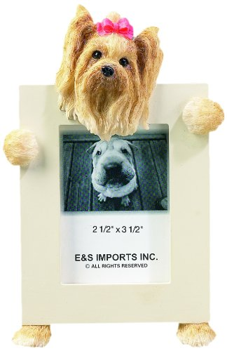 Yorkshire Terrier Longhair 2.5'' x 3.5'' Photo Frame