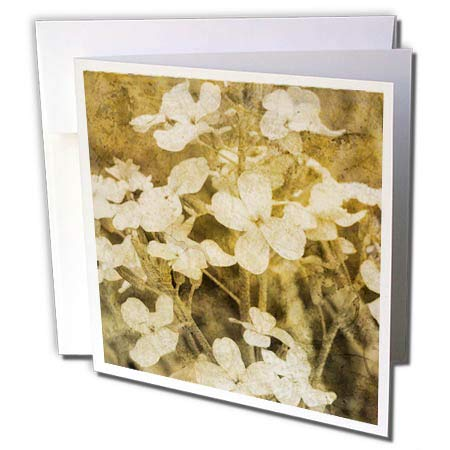 Cassie Flower - 3dRose Cassie Peters Florals - Wildflowers Sepia Grunge - 12 Greeting Cards with envelopes (gc_292693_2)