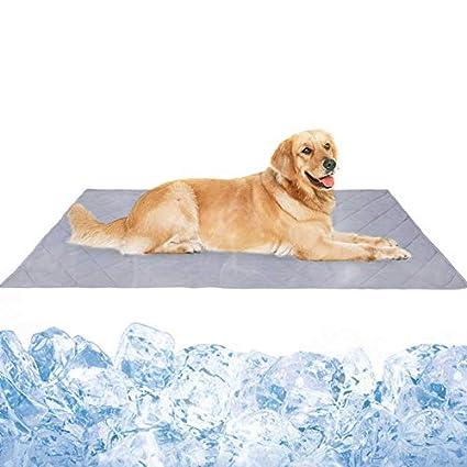 Amazon Com Pet Dog Summer Cooling Mats Blanket Soft Bed
