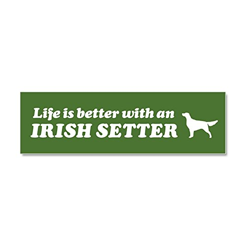 CafePress - Life is Better with an Irish Setter Car Magnet - Car Magnet 10 x 3, Magnetic Bumper Sticker