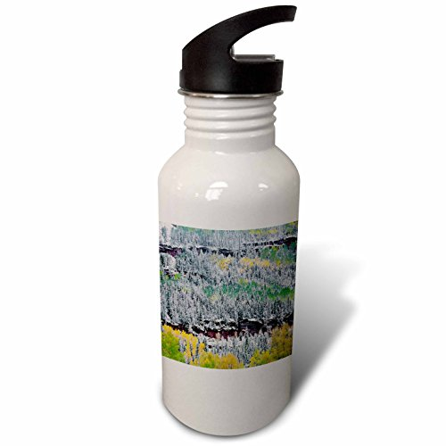 - 3dRose Danita Delimont - Trees - USA, Colorado, Uncompahgre Forest, San Juan Range, Fall snowstorm. - Flip Straw 21oz Water Bottle (wb_259105_2)