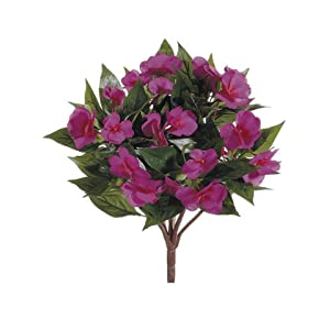 "13.7"" New Guinea Impatiens Bush Fuchsia (Pack of 6) 9"