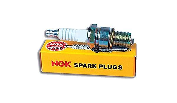 NGK 4323 correa de transmisión correa de distribución poleas: Amazon.es: Coche y moto