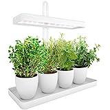 LED Indoor Herb Garden, Height Adjustable GrowLED Plant Grow Indoor Garden Light, LED Germination Kit with Smart Timer, Suita