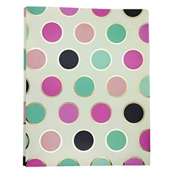 Amazon.com : 2-Pocket Plastic Folder with 3 Prong Harper ...