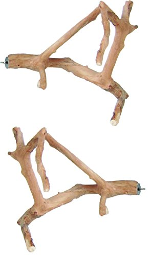 A&E Cage Company 2 Pack of Java Wood Multi Branch Bird Perches, Small
