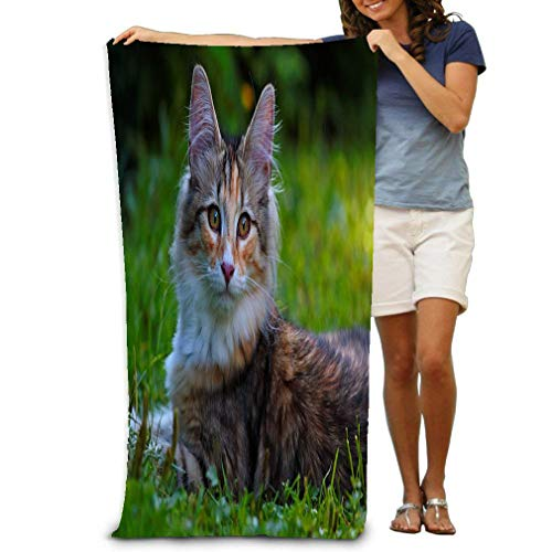 (Premium Quality Oversized Beach Towel Pool Towel,swim Towels For Bathroom,Gym,and Pool 31 In X51 In sweet norwegian forest cat kitten lying around lawn summerday norwegian forest cat kitten summerday )