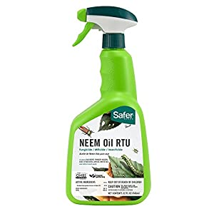 Safer Brand 5180-6 Neem Oil Ready-to-Use Fungicide, 1 Pack, Green