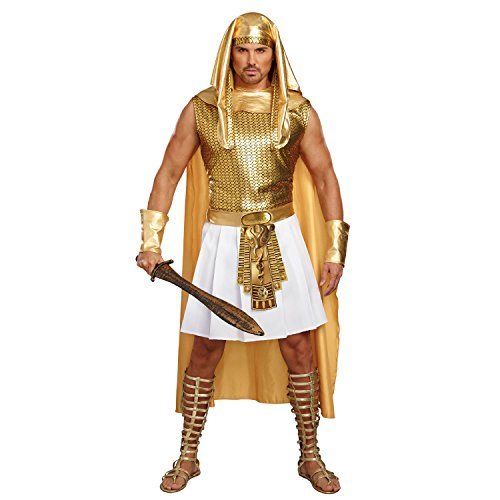 Egyptian Pharoah Costume (Dreamgirl Men's Ramses, Gold/White,)