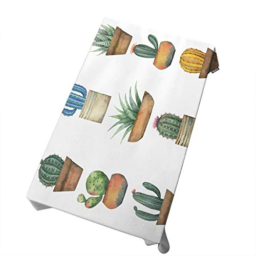 (Mugod Tablecloth Watercolor Set of Cacti and Succulent Plants Isolated on White Background Decorative Dining Room Kitchen Rectangular Table Cover 60 X 120 Inches)