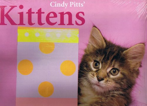KITTENS CINDY PITTS 2010 16-MONTH CALENDAR BY LEAP YEAR ()