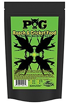 Pangea PIG Insect Grub (64 oz) by Pangea