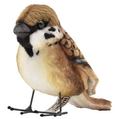 BH7019 Sparrow