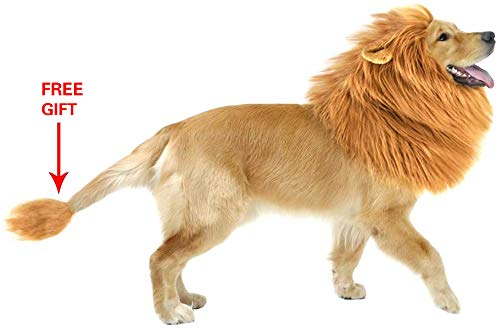 Golden Retriever Halloween Costumes (GABOSS Lion Mane Costume for Dog, Lion Wig for Dog Large Pet Halloween Festival Party Fancy Hair Dog Clothes with Ear and Tail,)