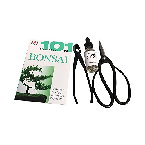 Bonsai Starter Set - Bonsai Tree Kit with Essential Bonsai Tips - Perfect Bonsai Set for Beginners and Experts (Where To Buy Artificial Tree)