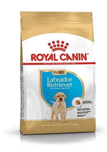 Royal Canin Labrador Retriever Puppy Dry Dog Food 3 Kg