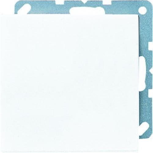 Jung ls990 - Placa ciega blanco alpino LS994BWW
