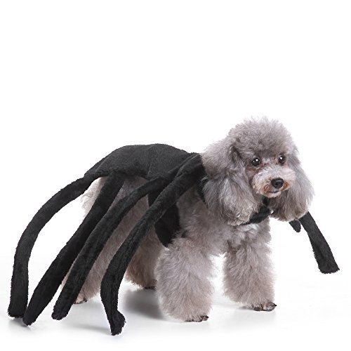 Giveme5 Spider Dog Costume, Fuzzy Black Velour Spider Costume Costume for Pet Puppy Dog Cat Halloween Dress-up Christmas Cosplay Costume Clothes Apparel (Large-fits Neck Girth:12