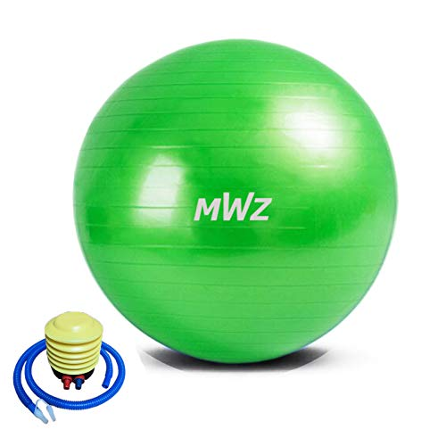 MWZ Exercise Ball Thick Balance 55/65/75CM Yoga Ball for Fitness Professional Anti Burst & Non Slip Stability Ball Quick…