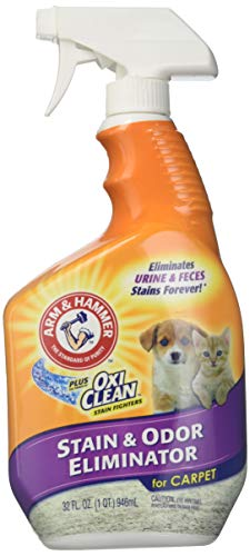 Arm & Hammer Pet Stain & Odor Remover Plus Oxiclean, 32 fl oz (Pet Stain And Odor Remover Arm And Hammer)