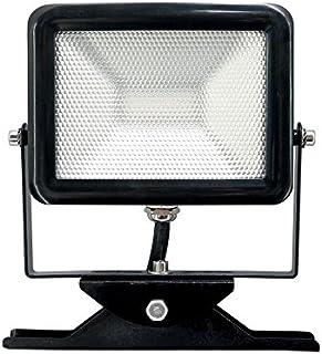 Electraline 63504 Proiettore Faretto Slim da Esterno, Bianco, 30 Watt