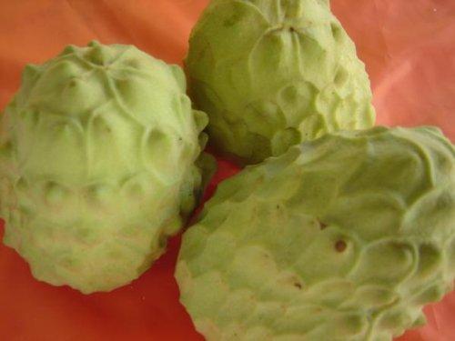 フルーツyamakiti 森のアイスクリーム 和歌山 チェリモヤ 1.5キロ(3~5玉)