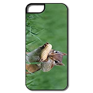 Personalized Cool Hard Plastic Snow Proof Squirrel Eat Peanut Iphone 5s Cases