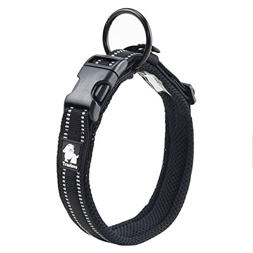 pettom Adjustable Nylon Pet Collar acolchada 1