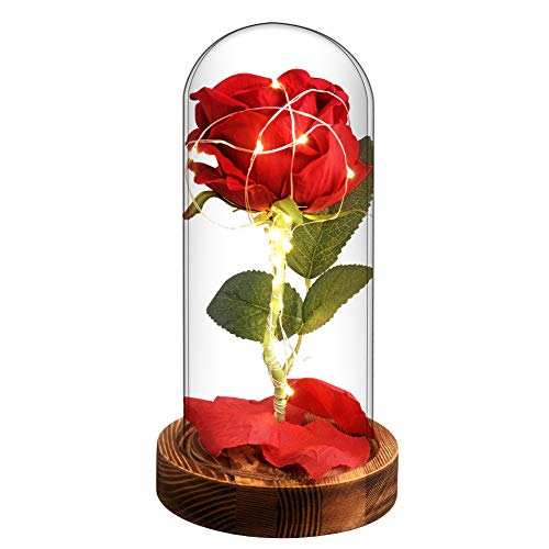 Valentine Rose Gift for Her - Beauty and The Beast Red Enchanted Rose That Last Forever in Glass Dome with Fairy Light String Powered Battery Mother's Day Wedding Anniversary ()
