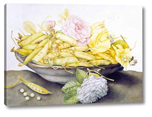 Bowl with Peas by Giovanna Garzoni - 28