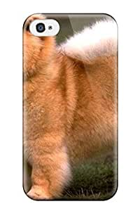 Cute Appearance Cover/tpu ZGScFVv5071XegcL Chow Chow Dog Case For Iphone 4/4s