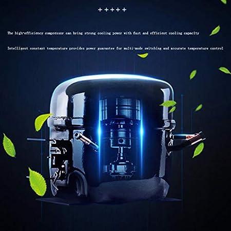 hanzeni Vinoteca -Versión Actualizada-Refrigerador De Vino Incorporado-Compresor Enfriador De Botellas De Vino-21.8 X 23.3 X 18.1 Pulgadas