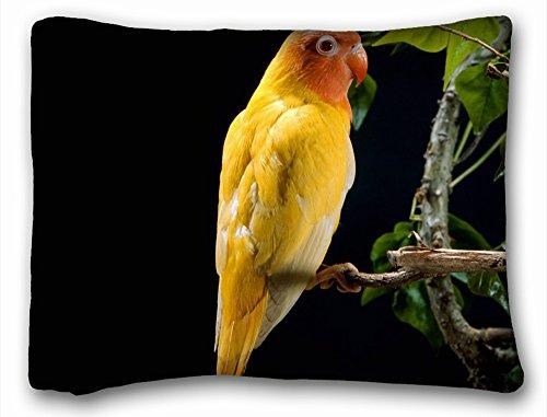 (Decorative Standard Pillow Case Animals Funny Yellow Parrot Bird 20