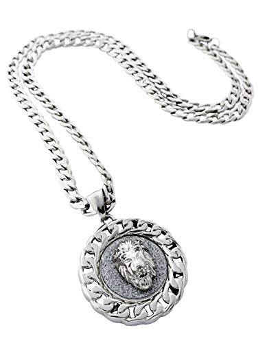 Pendant Link Silver - Exo Jewel Cuban Link Framed Medallion Pendant Stainless Steel Necklace with 24