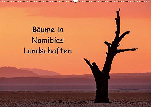 Bäume in Namibias Landschaften (Wandkalender 2019 DIN A3 quer): Der Baum in verschiedenen Landschaften Namibias. (Monatskalender, 14 Seiten ) (CALVENDO Natur) Anne Berger 367013543X Afrika Kalahari