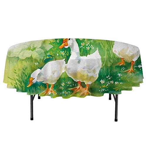 (Douglas Hill Rubber Duck Easy to Care for Leakproof and Durable Round tablecloths Goose in Farm Lake Plants Grass Reeds Flowers Pond Animals Geese Feathers Outdoor Picnic D70 Inch Green and White)