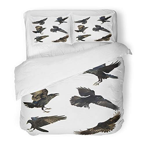 Emvency 3 Piece Duvet Cover Set Brushed Microfiber Fabric Breathable Horror Bird Flying Common Ravens Corvus Corax White Halloween Mix Six Air Angry Bedding Set with 2 Pillow Covers Full/Queen Size -