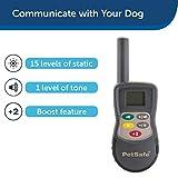 PetSafe Elite Little and Big Dog Remote