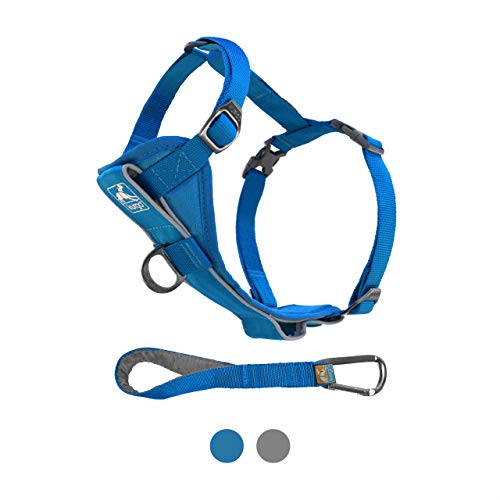 Kurgo Dog Harness | Pet Walking Harness | No Pull Harness Front Clip Feature for Training Included | Car Seat Belt | Tru-Fit Quick Release Style | Small | Blue