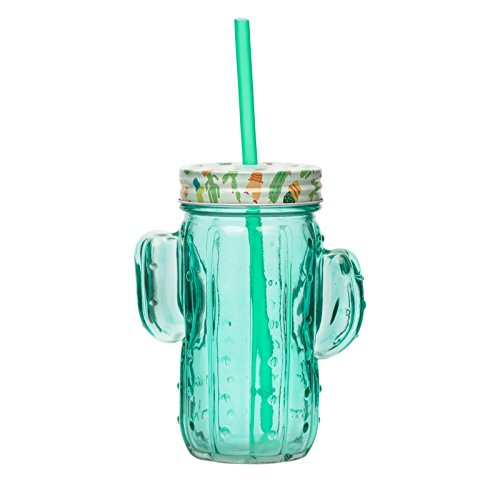 Amici Home, 7CN516S6R, Cactus Glass Mason Jar, Raised Relief Shaped Textured Glassware, Painted Metal Twist Top Lid with Plastic Straw, 16 Ounce Capacity, Set of 6