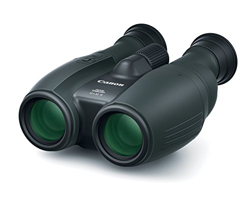 Canon Cameras US 12X32 IS Image Stabilizing Binocular, Black (1373C002) by Canon