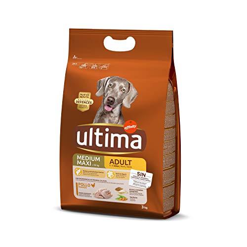 Comprar ultima Pienso para Perros Medium-Maxi Adultos con Pollo - 3 kg - Tienda Online Piensos Especiales Perros - Envíos Baratos o Gratis 24/48H