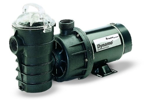 Pentair 340204 Stainless Steel Black Dynamo Two-Speed 115-Volt Pool Pump without Cord, 1-Horsepower